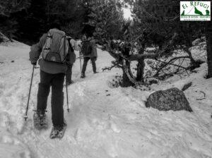Iniciació raquetes de neu